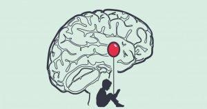 Biologia della paura - amigdala e sistema limbico del cervello 2